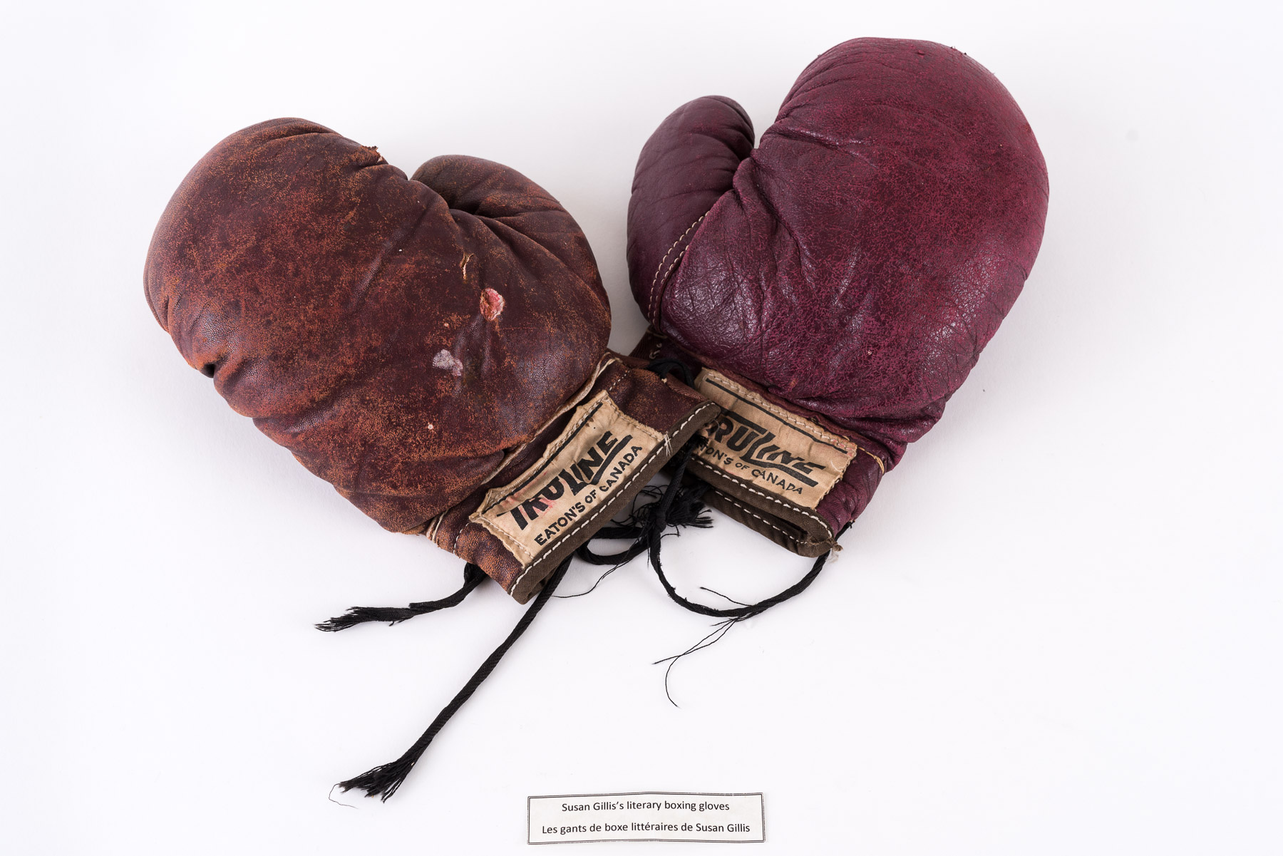 Susan Gillis's literary boxing gloves